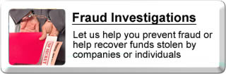 Fraud Investigation Information